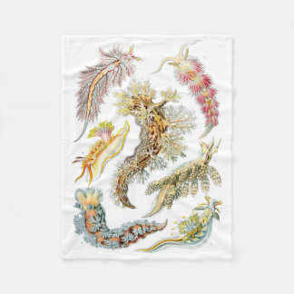 Haeckel Nudibranchia Fleece Blanket