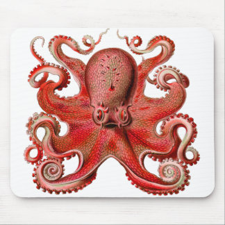 Haeckel Octopus Red Mouse Pad