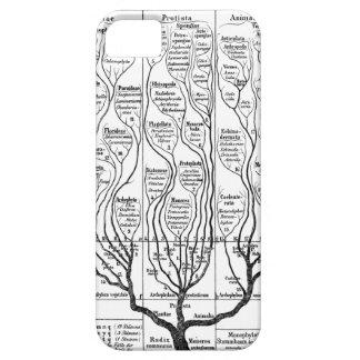 Haeckel Tree of Life iPhone 5 Case