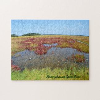Hammonasset Marsh Puzzle