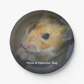 Hamster Paper Plates 7 Inch Paper Plate