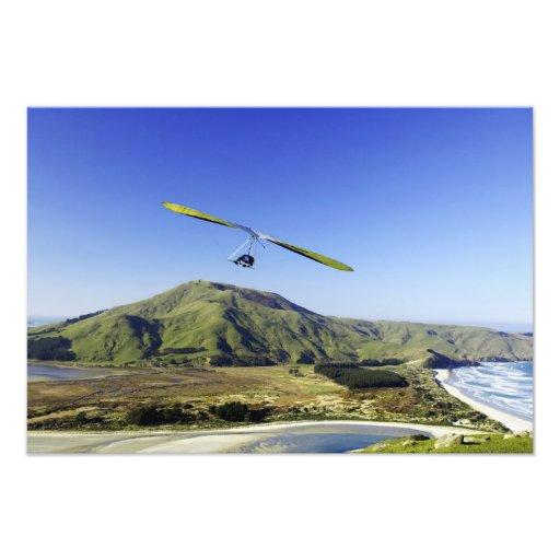 Hang Glider, Otago Peninsula, near Dunedin, Photographic Print