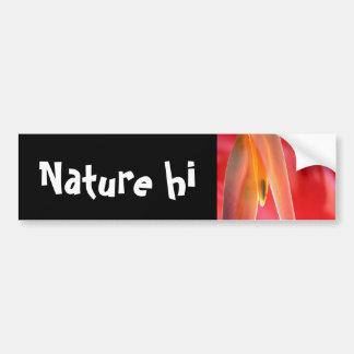 hangup bumper sticker