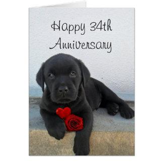 Happy 34th  Anniversary Labrador puppy card