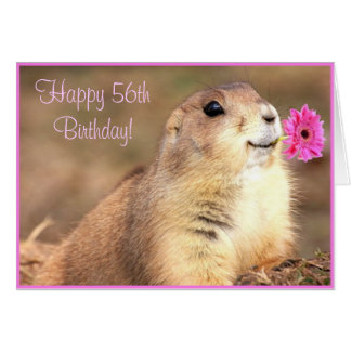 Happy 56th Birthday Prairie dog greeting card