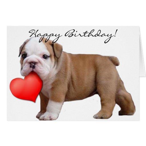 Z Gallerie Bulldog Birthday Bulldog Puppy...