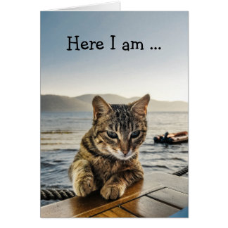 "Happy Birthday Card: Cat says ""Here I am"" Card"