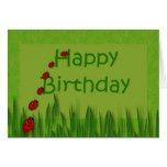 Happy Birthday Lady Bugs Card