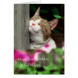Happy Cat Birthday Card