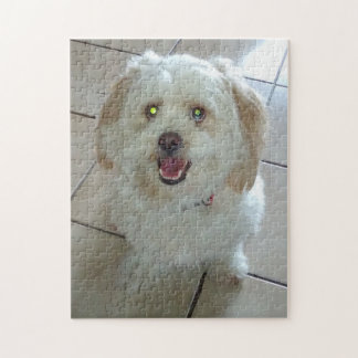 HAPPY DOG JIGSAW PUZZLE