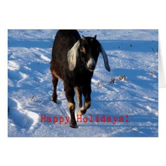 Happy Holidays Nubian Goat Cards