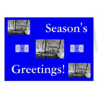 Happy Holidays/Season's Greetings! Greeting Card