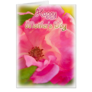 Happy Mother's Day - Pink Knockout Rose Card
