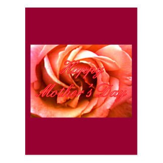 Happy Mother's Day Red Pink Rose The MUSEUM Zazzle Postcard