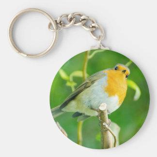 Happy Orange Robin with Funny Eyes in Leafy Tree Key Chain