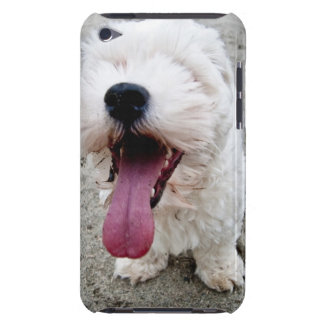 Happy Puppy white dog, malteese, maltipoo. Barely There iPod Case