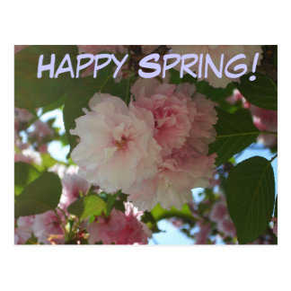 Happy Spring Double Blossoming Cherry Postcard