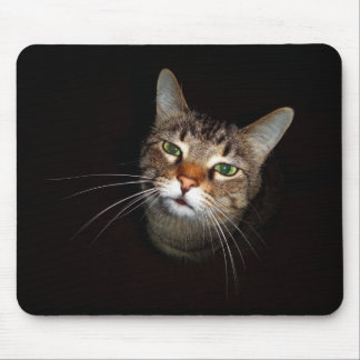 Happy Tabby Wiskers Mouse Pads