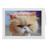 Happy Valentine's Day Persian Cat Humour