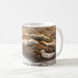 Harbor Seals Mug