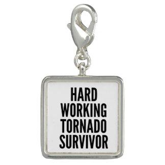 Hard Working Tornado Survivor