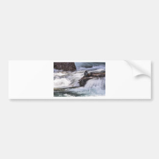 Harlequin duck and waterfall bumper sticker