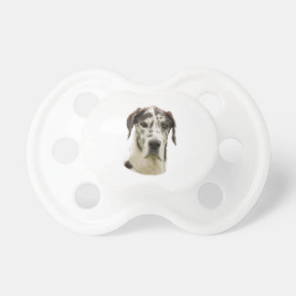 Harlequin Great Dane Portrait Photo Dummy