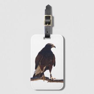 Harris' Hawk luggage tag