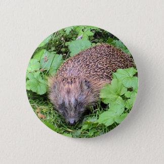 Harry Hedgehog 6 Cm Round Badge