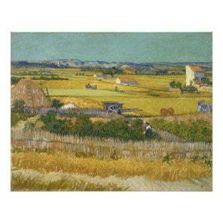 Harvest by Vincent Van Gogh Photo Print