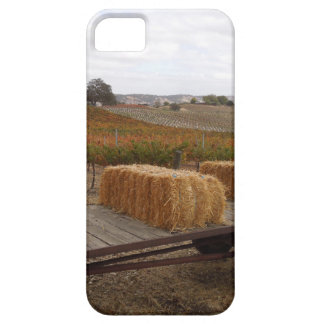 Harvest Season at Doce Robles, Paso Robles Barely There iPhone 5 Case