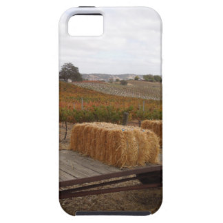 Harvest Season at Doce Robles, Paso Robles iPhone 5 Cases