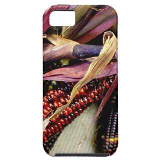 Harvest Time iPhone 5 Cover