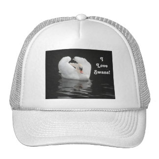 Hat Swan Swimming, I Love Swans