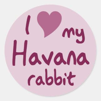 Havana rabbit classic round sticker