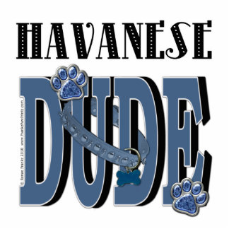 Havanese DUDE Photo Sculptures