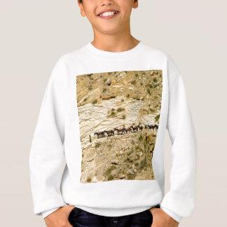Havasu Canyon Pack Train Sweatshirt
