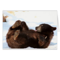 Have a BEARY Good Day!!! Greeting Card