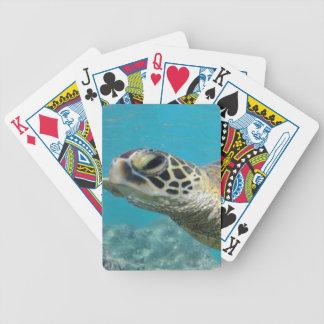 Hawaii Green Sea Turtle Card Deck