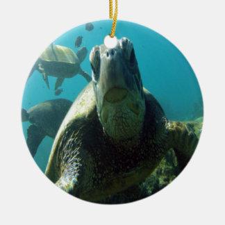 Hawaii Green Sea Turtle Round Ceramic Decoration