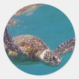 Hawaii Honu Classic Round Sticker