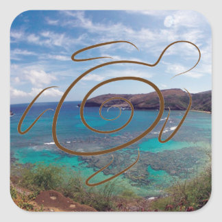 Hawaii Islands and Oahu Turtle Square Sticker