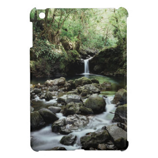 Hawaii, Maui, A waterfall flows into Blue Pool iPad Mini Covers
