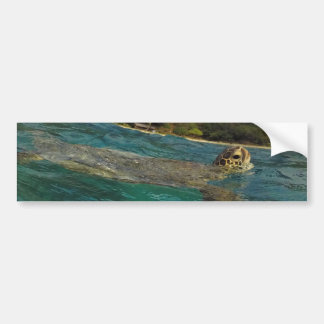 Hawaii Turtles - Honu Bumper Sticker