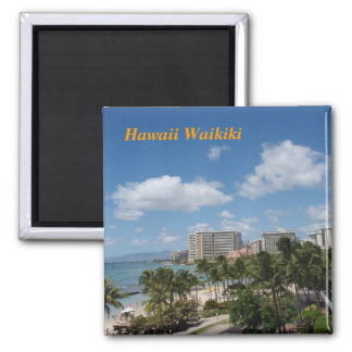 Hawaii Waikiki Magnet