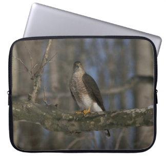 Hawk, Electronics Bag. Laptop Sleeve