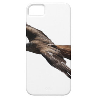hawk iPhone 5 covers