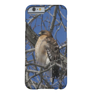 Hawk, iPhone 6 Case. Barely There iPhone 6 Case