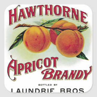 Hawthorne Aprilcot Brandy Square Sticker