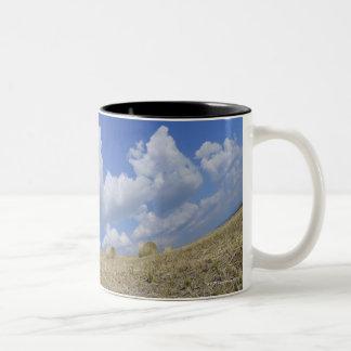 Hay Bales in Field, Pienza, Val d'Orcia, Siena Two-Tone Coffee Mug